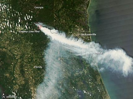 satellite image of Florida