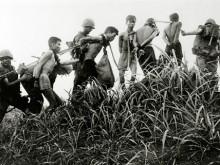 US marines with captured Vietcong guerrillas